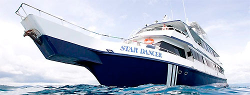 star dancer - png photo diving trip